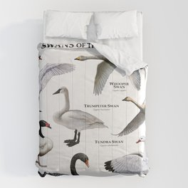 Swans of the World Comforters