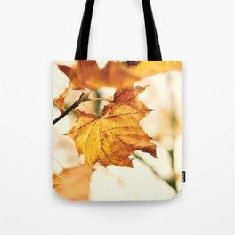 A Fall Like This Tote Bag