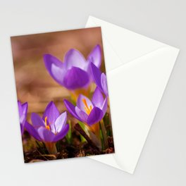 The crocus family Stationery Cards
