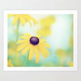 Yellow Turquoise Teal Aqua Blue Daisy Flower Photography, Blackeyed Susan Floral Nature Art Print