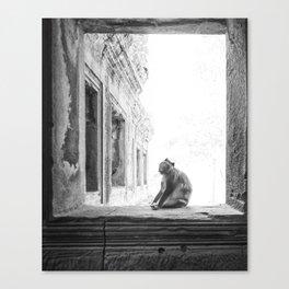 Sitting Monkey Canvas Print