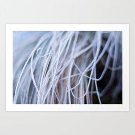 Seaweed? Art Print