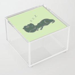 DINOSNORE Acrylic Box