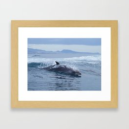 Dolphin: love for waves, love for life Framed Art Print