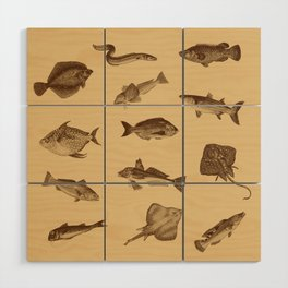 Vintage style fish of the ocean Wood Wall Art