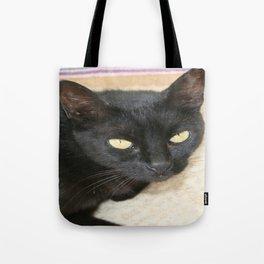 Beautiful Black Cat Portrait  Tote Bag