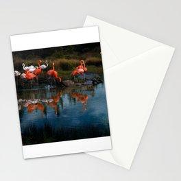 Flamingo Convention Stationery Cards