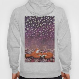 foxes under the stars Hoody