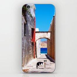 Greek village kitty iPhone Skin