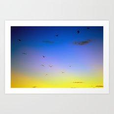 Summer birds Art Print