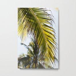 Pretty Palm Metal Print