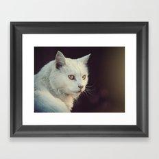 Soul Thief Framed Art Print