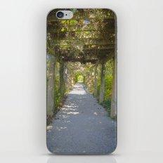 Perfect pathway iPhone & iPod Skin