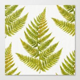 Watercolor fern pattern Canvas Print