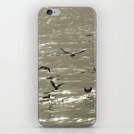 Summerbirds iPhone Skin