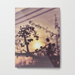 Through that Light Metal Print
