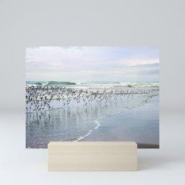 seabirds Mini Art Print