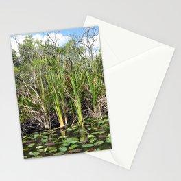 Everglades Near Key Largo Florida Stationery Cards