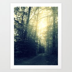 Take a Back Road Art Print