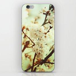Sakura Gold iPhone Skin