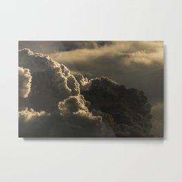 Plume Metal Print