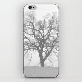 Grey Winter iPhone Skin