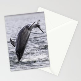 The leaping dolphin Stationery Cards