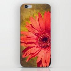 Deja vu! iPhone & iPod Skin