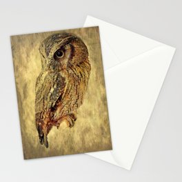 Olly Stationery Cards