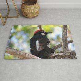 Acorn Woodpecker in Malibu Rug