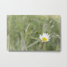 wind-pollinated flowers • nature photography Metal Print