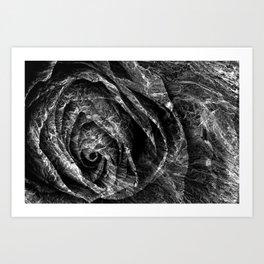 Charred Rose Art Print