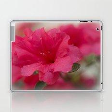 Pink Azalea  Laptop & iPad Skin