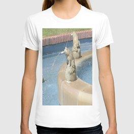 Frog Fountain T-shirt