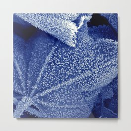 cold winter II Metal Print