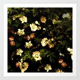 Floral Night I Art Print