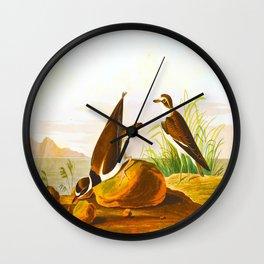 Ring Plover Bird Wall Clock