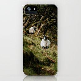 Scotland goat - landscape, nature, animals, greenland, meadow iPhone Case