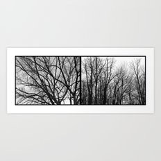 'Winter Trees Diptic 1' Art Print