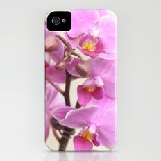 Pink orchid iPhone (4, 4s) Slim Case