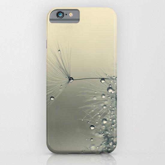 dandelion grey III iPhone & iPod Case