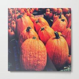 Pumpkins on a Pallet Metal Print