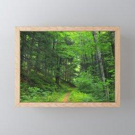 Forest 5 Framed Mini Art Print