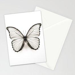 Mono Morpho Butterfly Stationery Cards