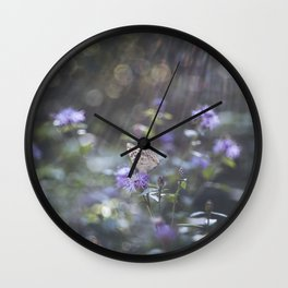 Sunrays  over the butterfly Wall Clock