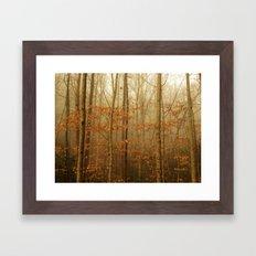 Forest Awakens Framed Art Print