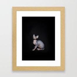 Dobby Framed Art Print
