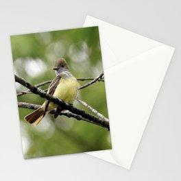 Great Crested Flycatcher Stationery Cards