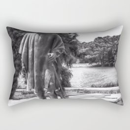 Stevie Ray Vaughan - Statue - Austin Town Lake - Black and White Rectangular Pillow