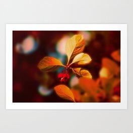 Autumn Berrys Art Print